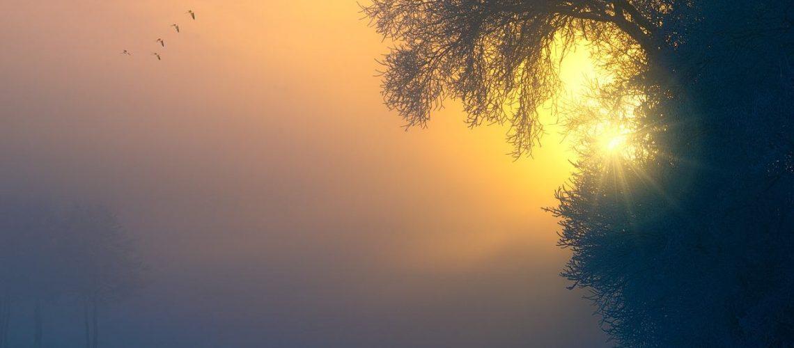 fog-3196953_1280